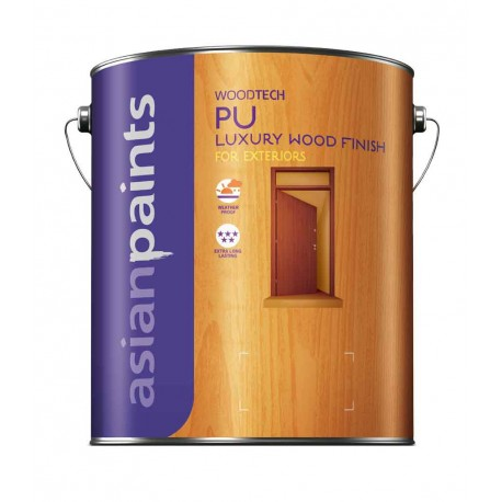 Asian Paints PU Exterior Sealer Clear 1L