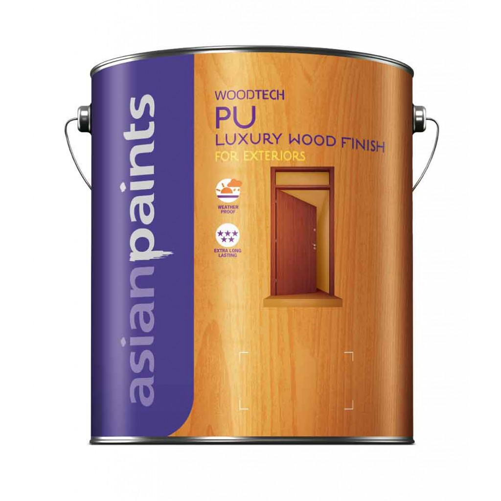 Asian Paints PU Exterior Sealer