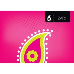 Zari - Asian Paints Wall Fashion Stencil